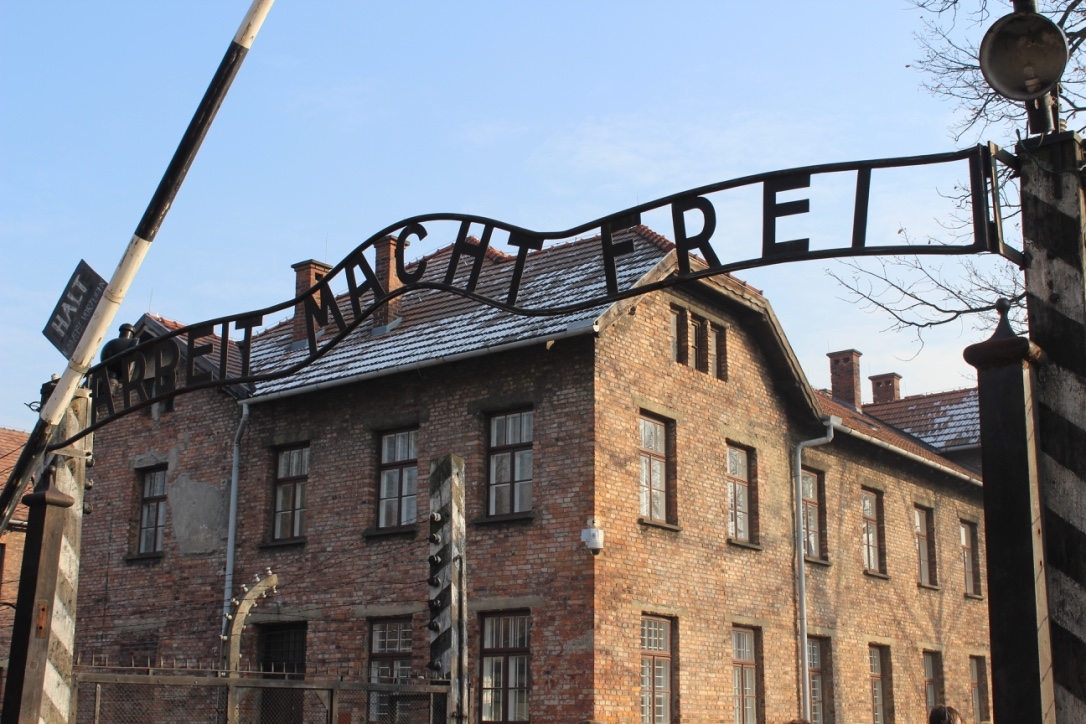 HMDT Blog: Youth Champion Hayley Carlyle writes about her visit to Auschwitz