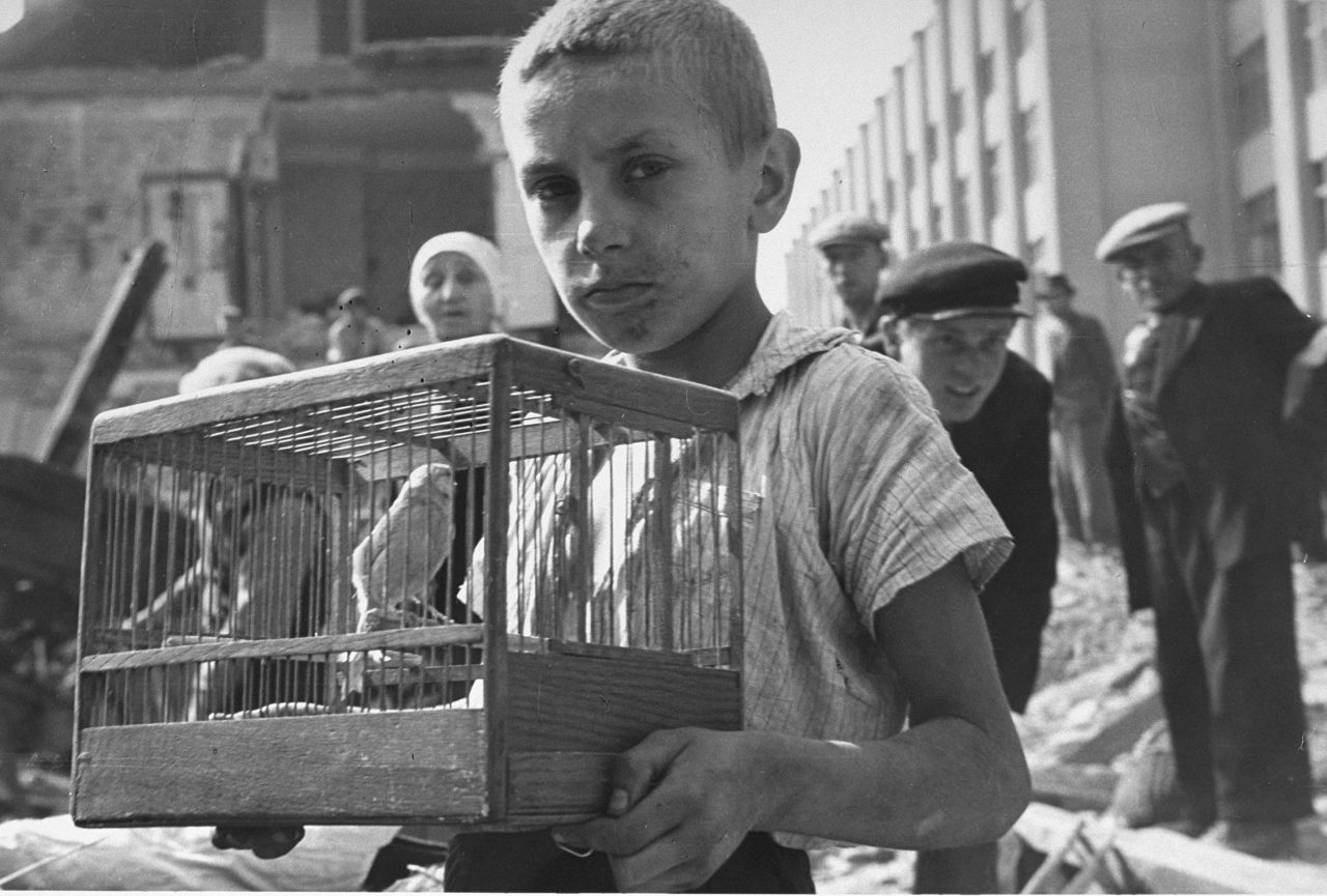 Warsaw Ghetto - a boy with a canary