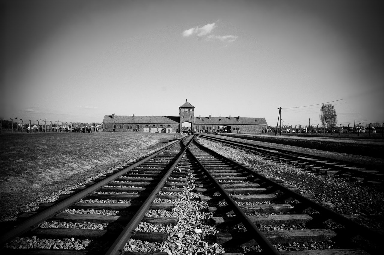 Learn about the Holocaust and genocide