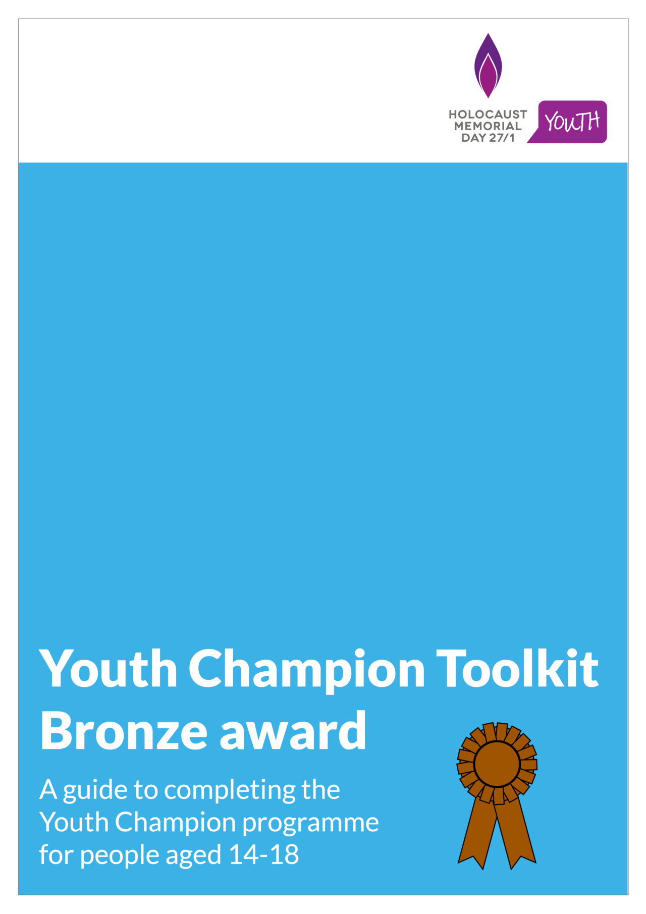 Youth Champion bronze award toolkit