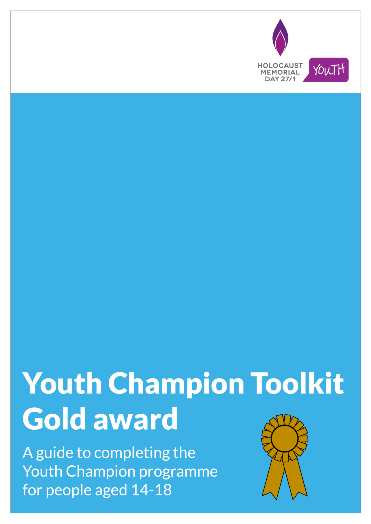 Youth Champion gold award toolkit