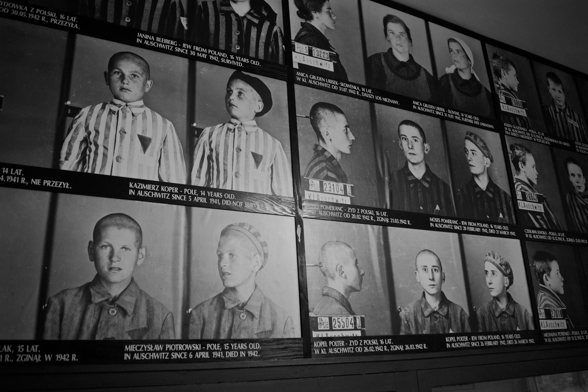 Remembering the Holocaust: Fighting fascism today